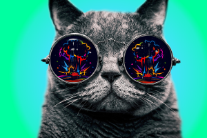 colorful explosion digital art cats morpheus dope animals simple background glasses