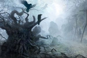 creepy animals crow dark roots birds stones trees forest fantasy art raven column mist nature branch