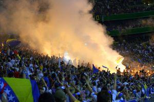 crowds bosnia and herzegovina fans