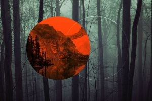 dark polyscape trees forest nature digital art circle