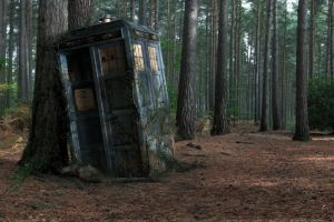 decay wood tardis doctor who