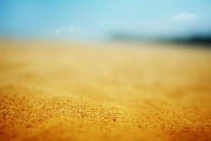 depth of field blurred macro yellow beach sand