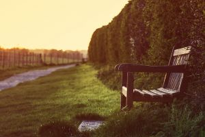 depth of field outdoors bench