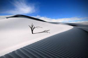 desert sand landscape sky trees clouds