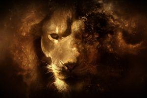 digital art animals lion
