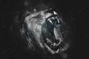 digital art artwork lion animals