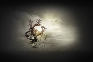 digital art artwork trees surreal picture frames
