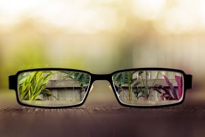 digital art depth of field bokeh glasses plants glass