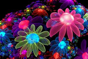 digital art fractal flowers colorful