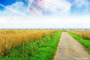 digital art landscape field