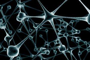 digital art neurons cgi artwork