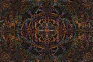 digital art pattern fractal