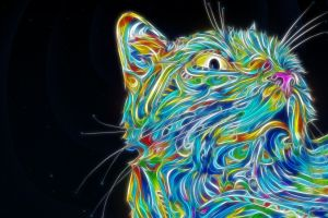 digital art psychedelic animals colorful cats fractalius matei apostolescu