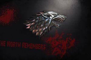 direwolf house stark game of thrones direwolves