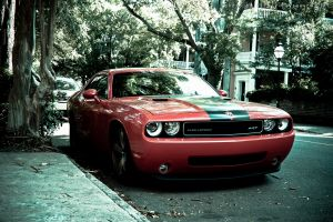 dodge lantern dodge challenger srt street house vehicle muscle cars urban car red cars