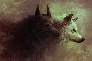 fantasy art wolf artwork digital art animals