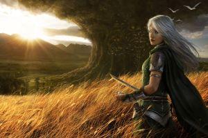 fantasy girl elves fantasy art