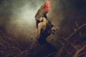 fantasy girl surreal birds digital art rose fantasy art women