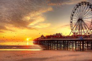 ferris wheel pier beach sunset birds