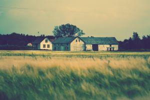 field landscape house building
