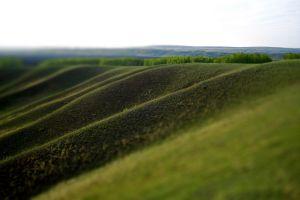 field landscape outdoors