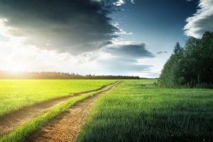 field landscape road