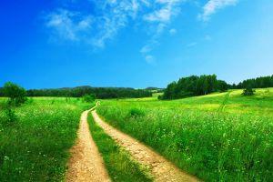 field sky landscape path
