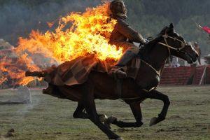 fire burning horse