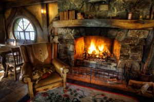 fire hdr fireplace indoors cats