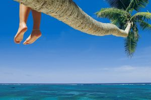 foot sole palm trees holiday feet tropical sea beach