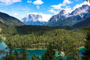 forest canada clouds nature landscape trees mountains