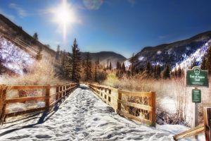 forest nature sunlight aspen snow trees mountains landscape fence colorado