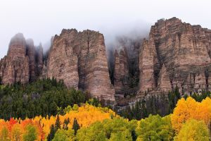 forest trees cliff mountains landscape clouds fall mist nature rock