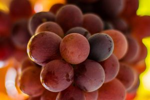 grapes fruit food