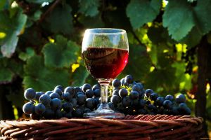 grapes wine alcohol drink fruit