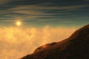 grass animals birds sky clouds landscape nature sunlight