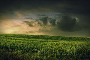 grass field landscape skyscape clouds