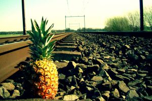 green outdoors pineapples food fruit metal railway stones