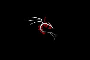 hacking linux dark kali linux