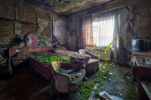 house bed ruin overgrown indoors