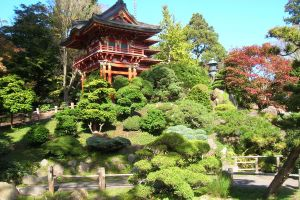 japan asia garden building