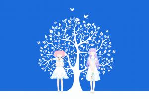 kaname madoka mahou shoujo madoka magica akemi homura anime girls anime