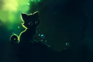 kittens animals cats apofiss