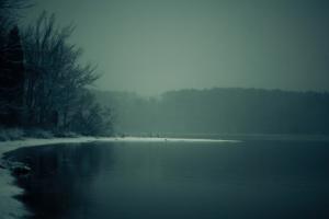 lake mist nature