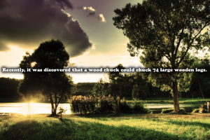lake quote landscape