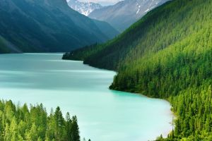 lake water mountains nature trees landscape