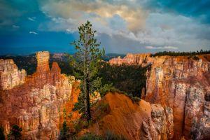 landscape bryce canyon national park utah