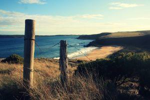 landscape coast nature fence