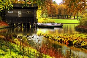 landscape fall plants trees river house boat water green