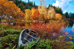 landscape lake boat fall nature canoes trees